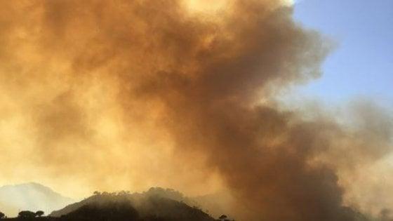 Sicilia disarmata contro gli incendi, le procure di Palermo,  Enna e Messina aprono indagini