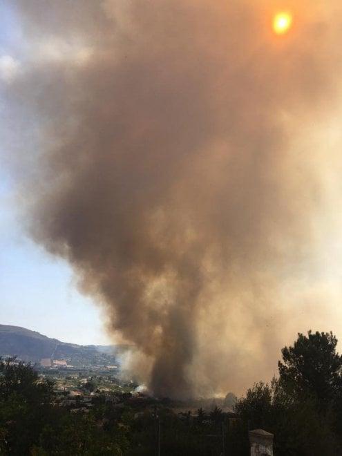 """Incendi in Sicilia: oggi 31 roghi, i danni a Castellammare del Golfo. Il sindaco: """"Scenario di guerra"""""""