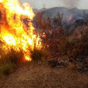 Incendi sui Nebrodi 150 abitazioni evacuate a San Salvatore di Fitalia