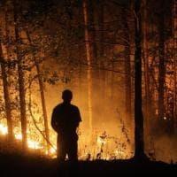 Incendi: rogo nell'agrigentino, piromani ragazzi di 14 anni