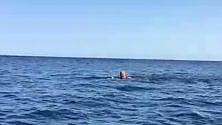 Montalbano nuota per smaltire il passito