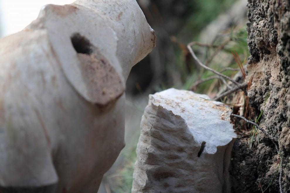 Palermo. Albero sulla fontana del Pescatore, statua danneggiata