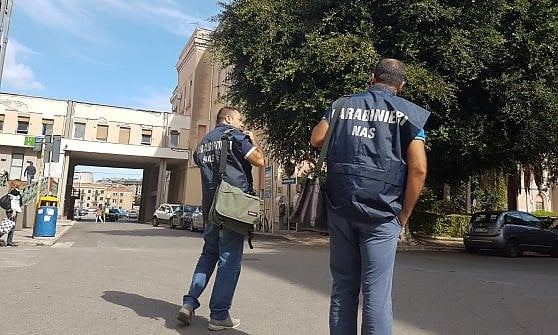 Palermo, le formiche sfrattano i malati: chiude la Terapia intensiva coronarica del Civico. Il ministero manda i Nas