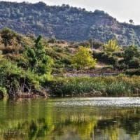 Nebrodi, il Comune di Troina revoca 1.300 ettari ad azienda in odor di mafia