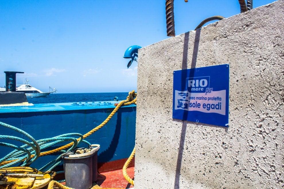 """Egadi: la barriera """"sea frendly"""" per salvare la posidonia oceanica"""