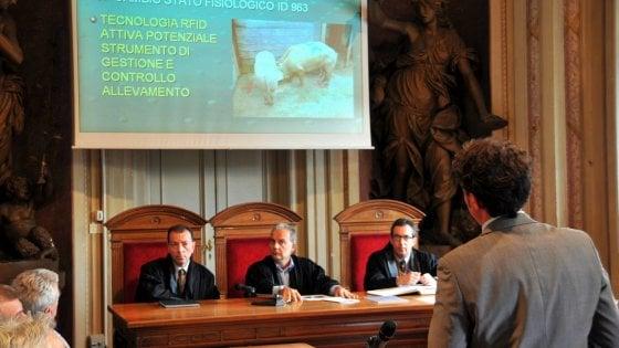 """Università: metà dei """"cervelloni"""" siciliani scelgono di laurearsi al Nord"""