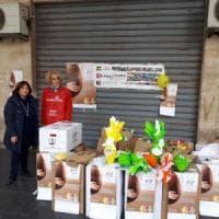 Palermo, in vendita le uova Ail per la ricerca