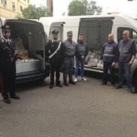 Palermo, sequestrati 450 chili di pesce al mercato del Capo