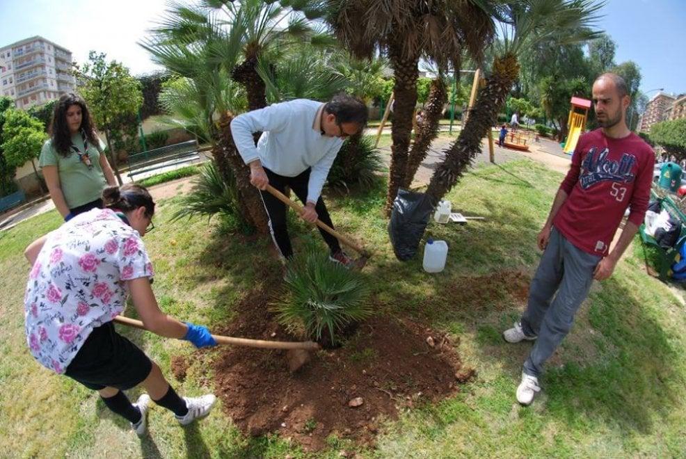"""Palermo, """"Guerrilla gardening"""" in azione: gerani e margherite al posto del degrado"""