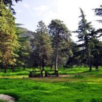 Domenica alla Favorita e musica all'Orto botanico: gli appuntamenti di oggi