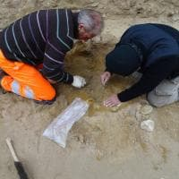 Himera, rinvenute 500 sepolture: salgono a 10mila le tombe della necropoli