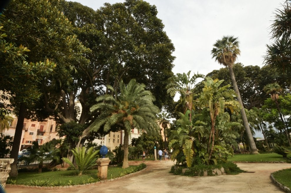 Palermo aprono i giardini di palazzo reale 1 di 1 palermo - I giardini di palazzo rucellai ...