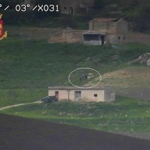 Blitz della polizia contro la rete che protegge Messina Denaro ...