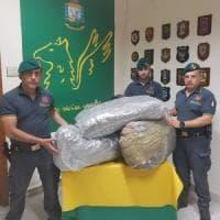 Catania: cinquanta chili di marijuana nel furgone, arrestato un albanese