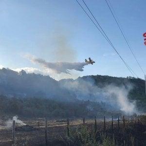 Palermo, bruciano San Martino e Boccadifalco: in azione il Canadair