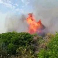 Palermo, arrestato piromane mentre appicca il fuoco su monte Grifone