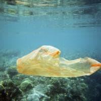 Un altro pezzo di Sicilia senza plastica: piatti usa e getta vietati ad