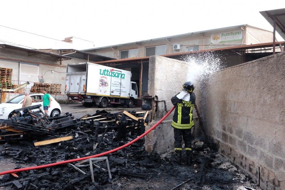 Albero abbattuto da un fulmine finisce su deposito di cassette di frutta: scoppia l'incendio