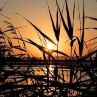 Trapani, l'incanto del tramonto sulle saline
