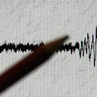 Terremoti, sciame sismico sull'Etna