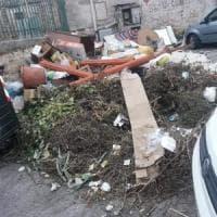 Palermo: allarme topi a scuola, protesta a Boccadifalco