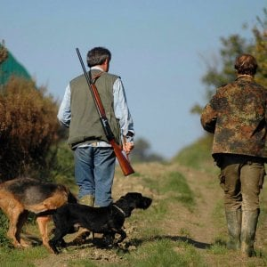 Il Tar sospende la caccia in Sicilia
