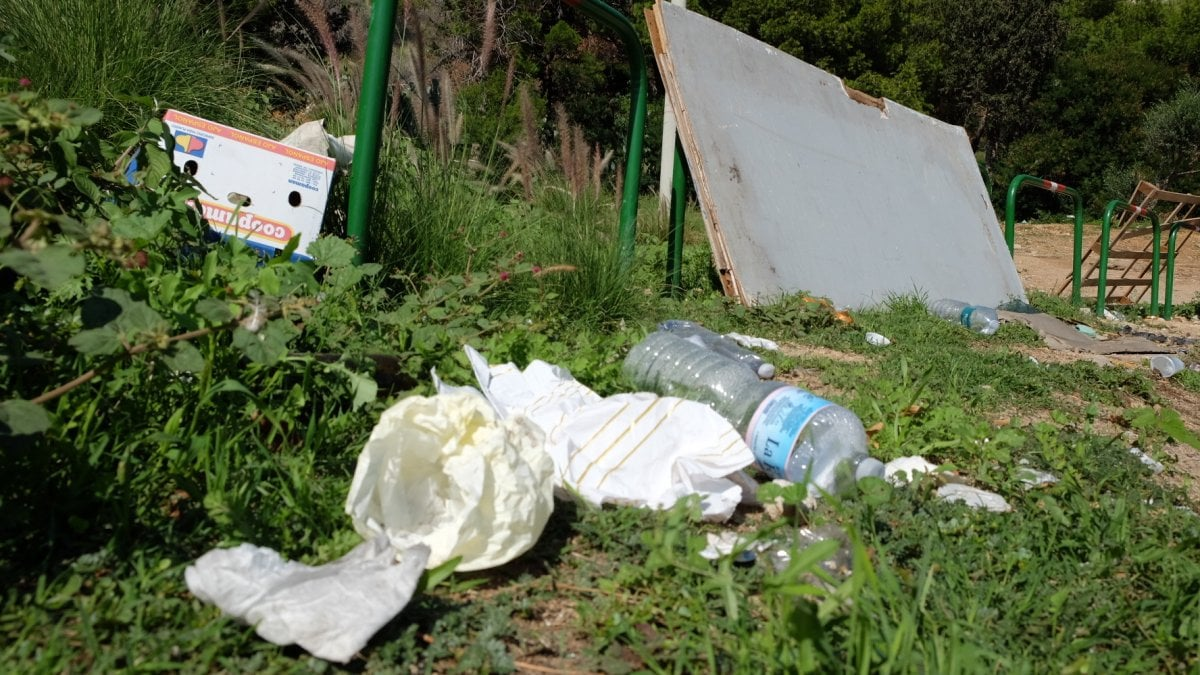 Palermo puliamo insieme la citt salviamola dai rifiuti for Arrediamo insieme palermo