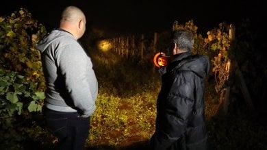 Una notte con le ronde  sull'Etna: ecco chi sventa  i furti d'uva    di GIORGIO RUTA