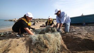 #oggiraccolgoio, in cento alla Bandita quaranta sacchi riempiti di rifiuti       Le immagini dal litorale    video         foto