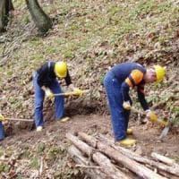 Forestali siciliani, arriva dopo 17 anni il nuovo contratto integrativo