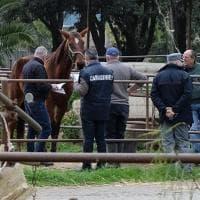 Palermo, gli arrestati del blitz all'ippodromo