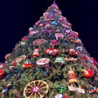 """Terrasini, l'albero in piazza è fatto di """"Radici"""""""