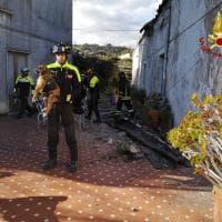 Terremoto Catania, salvati dai vigili del fuoco tre cagnolini intrappolati