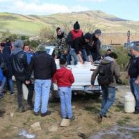 Poggioreale, l'ira dei pastori: tremila litri di latte versato per terra