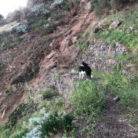 Eolie, frazione di Alicudi con tre abitanti isolata da due mesi per una