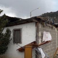 Palermo, le foto del maltempo: alberi caduti e campanili lesionati