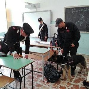 """Palermo, dopo i cani antidroga al liceo Umberto lettera aperta dei genitori al preside: """"Hai tradito un patto di fiducia"""""""