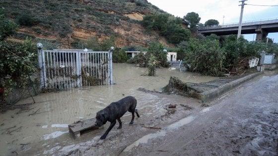 Casteldaccia, le case colpite dall'alluvione svaligiate dai ladri