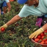 Ragusa, caporalato: operai italiani e stranieri denunciano due imprenditori