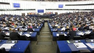 Elezioni europee, Gilet arancioni e partite Iva fuori dalla competizione