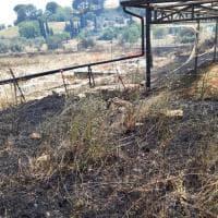 Sicilia, incendio a Morgantina: chiusa l'area archeologica