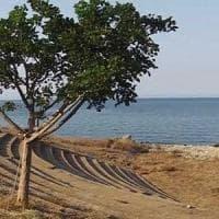 Palermo, la giunta comunale approva convenzione per il parco di Acqua dei