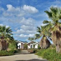 Palermo, viaggio nel parco Cassarà: il verde negato da sei anni