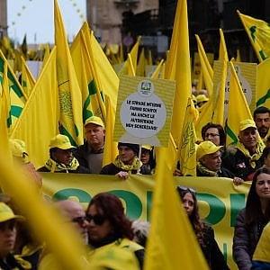 Palermo, la grande manifestazione degli agricoltori: 20 mila in corteo sino a Palazzo d'Orleans
