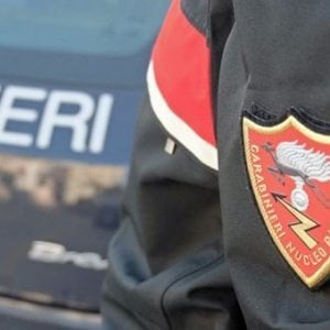 Mafia, blitz contro il clan Santapaola: 9 arresti, sequestrati beni e società per 12 milioni di euro
