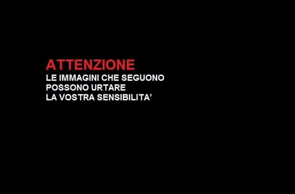 """L'incanto deì corpi veri """"plastinati"""": la mostra dei record strega Palermo"""
