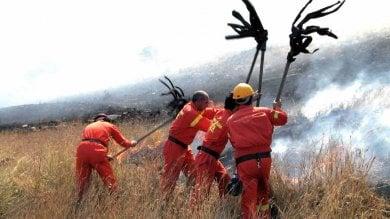 Forestali anziani: l'armata zoppa dell'antincendio