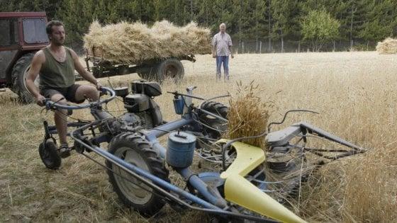 Agricoltura, Coldiretti: la Regione blocca 40 milioni per la burocrazia
