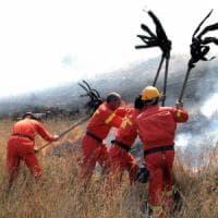 Sicilia, tornano i concorsi nella forestale: sì dell'Ars a 50 assunzioni