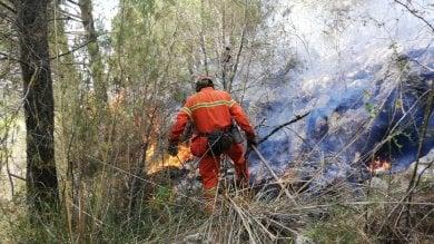 Incendio nell'area archeologica di Selinunte, allontanati i visitatori